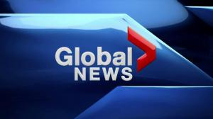 Global News at 6: Mar. 4, 2019
